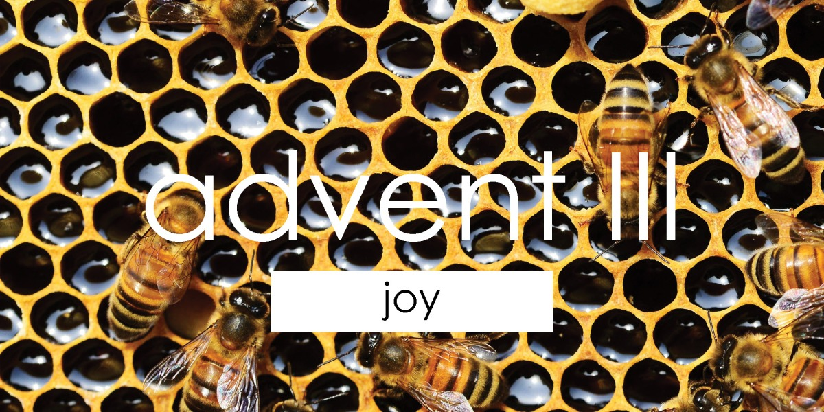 Advent III | Joy